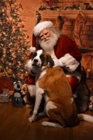 Santa Randy with dog